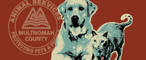 multnomah county animal shelter3